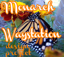 Monarch Butterfly Waystation Design Project