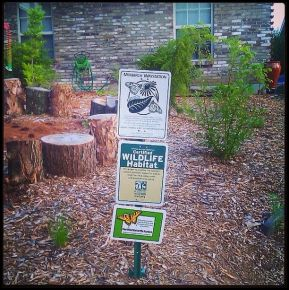 Arrival on Monarch Waystation Sign!